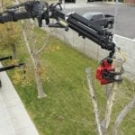 Certified Arborist Utah | Tree Service Pros