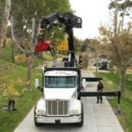 Commercial Property Site | Utah Tree Service Pros